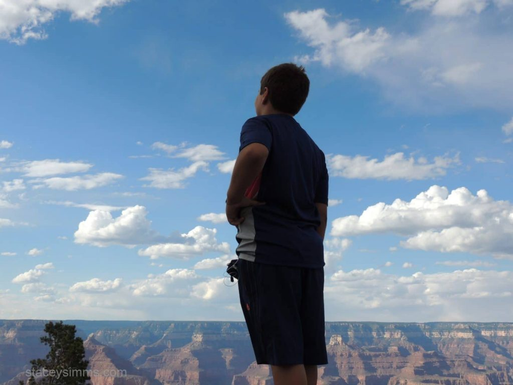 The Grand Canyon, part of our summer travels